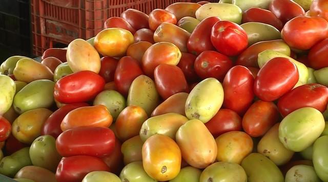 Tomate aumenta 39,29% e puxa alta da cesta básica em Natal em fevereiro, aponta Dieese